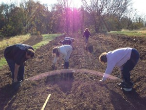 Prepping the soil. Taken by: Elizabeth Weir