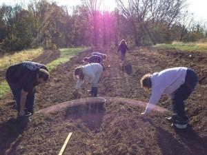 Prepping the soil. Taken by: Elizabeth Weir